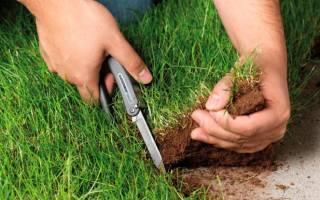 Ответственность за самовольный захват земли