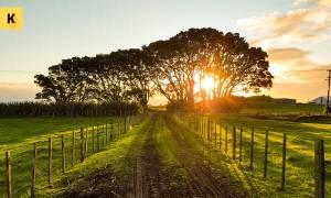 Как продать земельный участок без документов?
