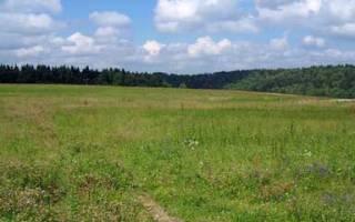 Как узнать статус земельного участка