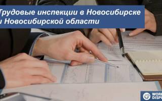 Трудовая инспекция официальный сайт новосибирск написать жалобу