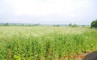 Как продать землю КФХ?