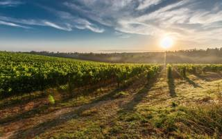 Как оформить землю в пожизненное наследуемое владение?