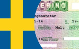 Как получить рабочую визу в швецию для кыргызов