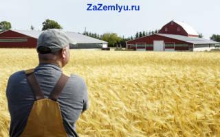 Как продать землю сельхозназначения в России?