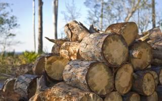 Организация бизнеса на дровах