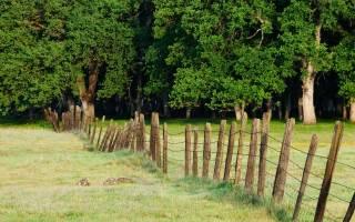 Как продать огород находящийся в собственности?