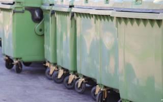 Административный кодекс предусматривает штраф за выброс мусора в неположенном месте
