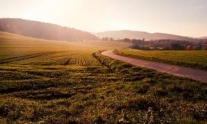 Передается ли аренда земли по наследству?