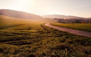 Переходит ли аренда земли по наследству?