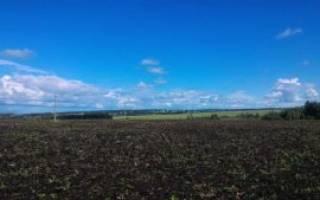 Как продать пай земли сельхозназначения?