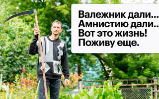 Закон об амнистии недвижимости