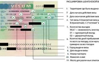 Шенгенская виза категории с что это